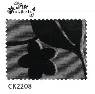 ck2208_img3.jpg
